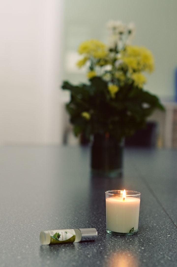 zenutrients-candle-04